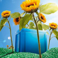 Recycling von Behälter zur Natur